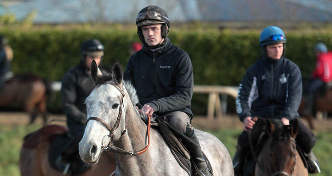 Nine set to face Arkle test