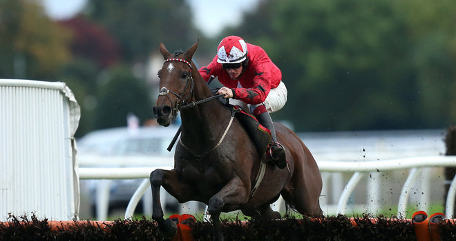 Champion Hurdle A-Z guide