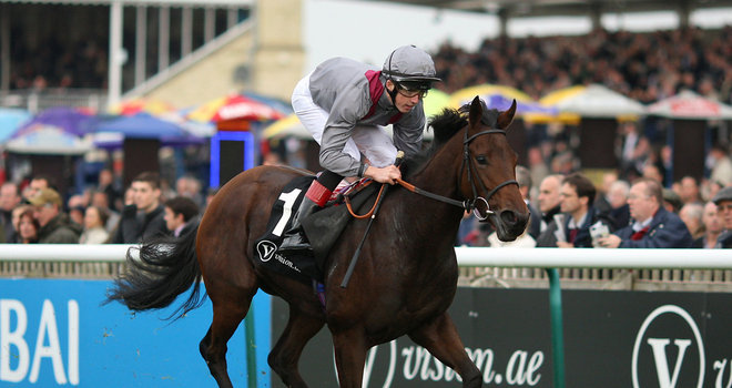 Al Thakhira: Newbury hopeful