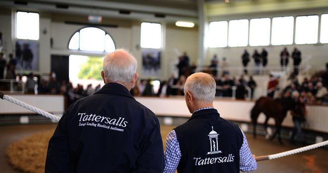 Record broken at Tattersalls