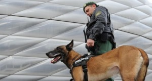 Gernan Arms Dealer Arrested; May Have Supplied Guns For Paris Attacks