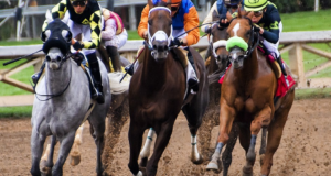 Ride With Style - Realities You Should Know About Preakness Stakes