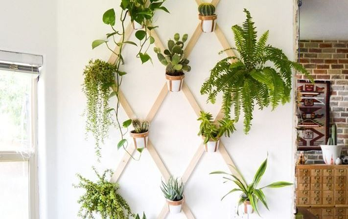 creative ideas for wall 20 unique ideas for hanging pots