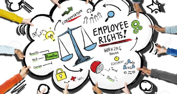 Know About Employment Rights in the UK