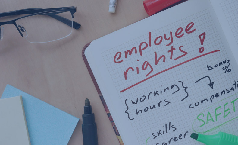 Statutory Rights Know About Employment Rights in the UK
