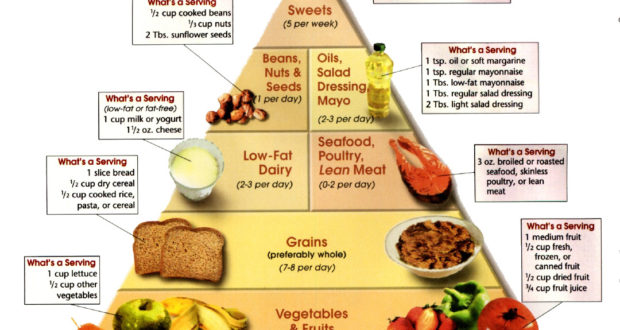 Low-carb Nutrition for Help Losing Weight