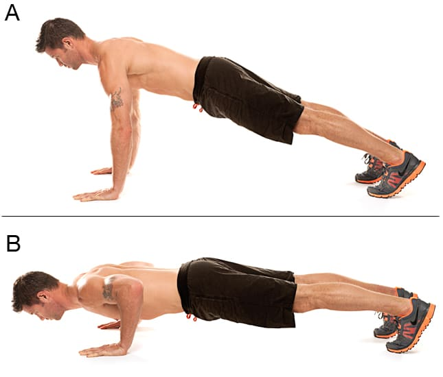 Ascending Phase What a personal trainer can explain about the biomechanics of a push-up